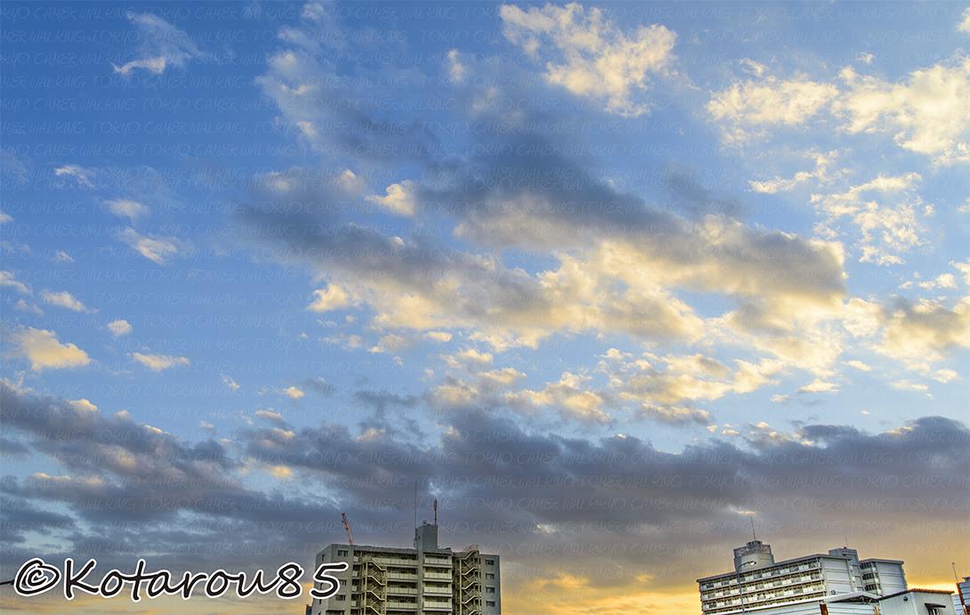 久しぶりの青空です 20141121