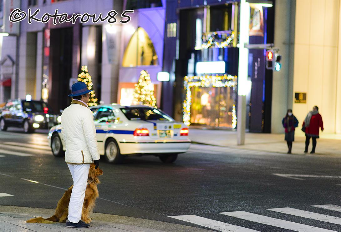 おしゃれに散歩 20141219