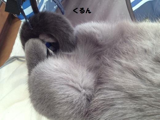 201211293.jpg