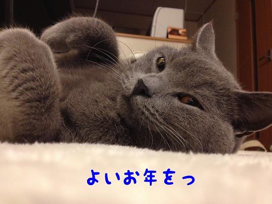 201212317.jpg