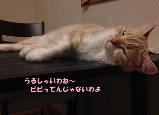 S_0000002580.jpg