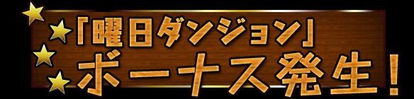 07_20130208133948.jpg