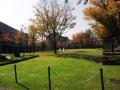 秋の風景2