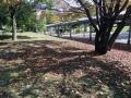 秋の風景30