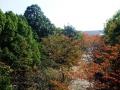 秋の風景36