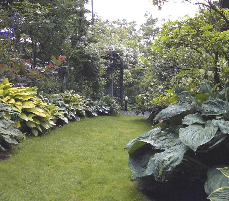 山中湖Sさんの庭2010_07