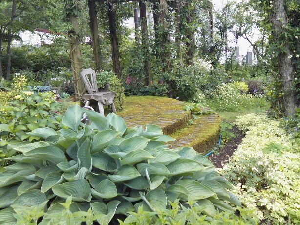 山中湖Tさんの庭2010_07