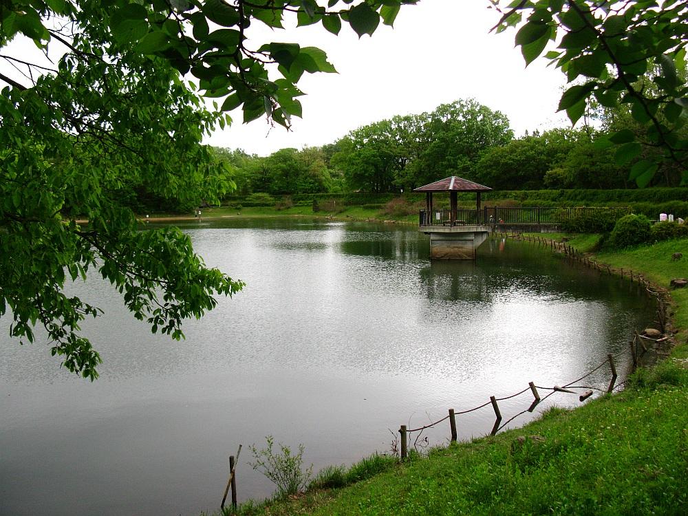 2012-05-04 007
