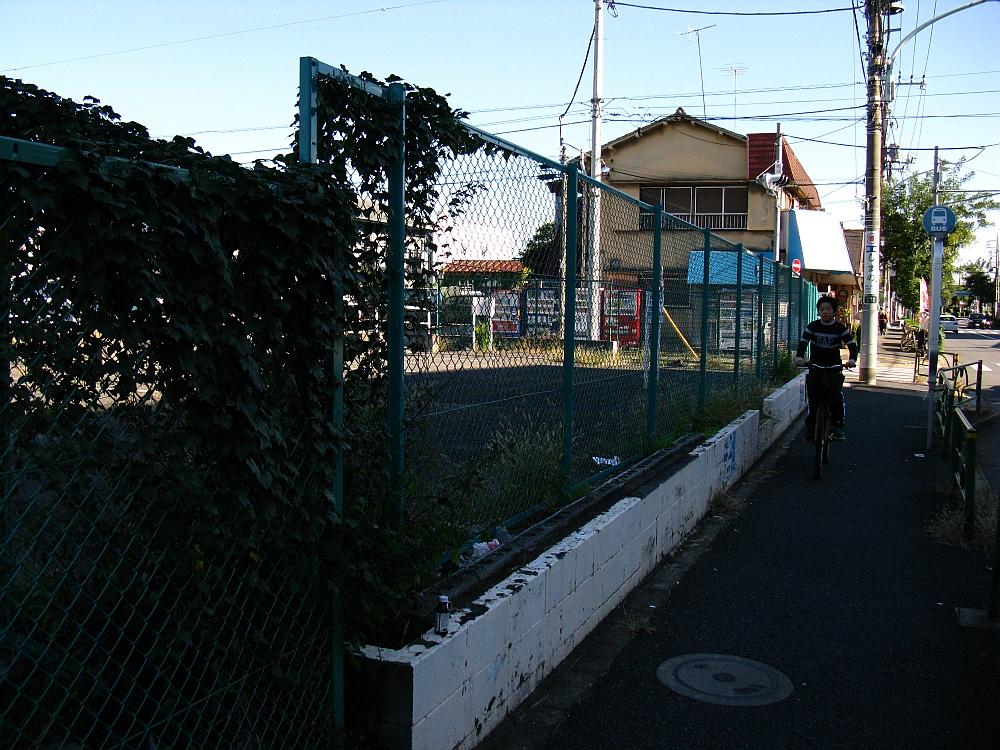 2010_11_03 034 (8)