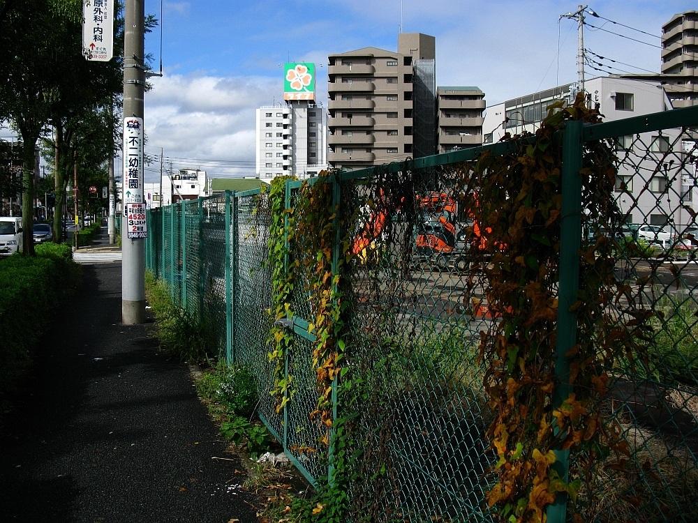 2010_11_01 0 (8)