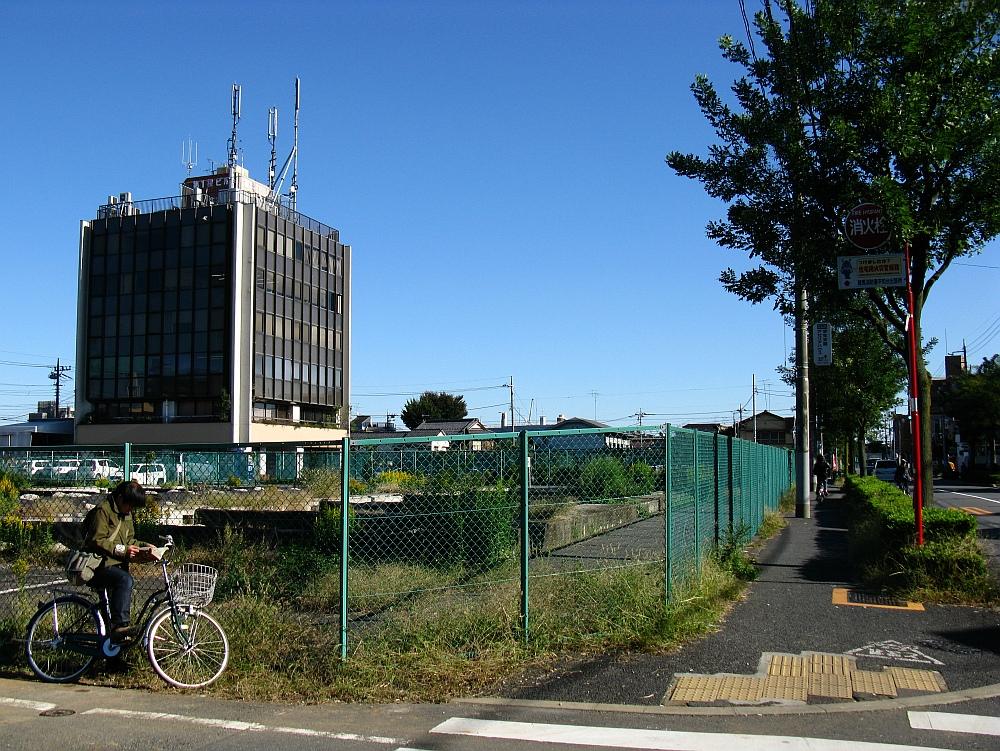 2010_11_03 034 (1)
