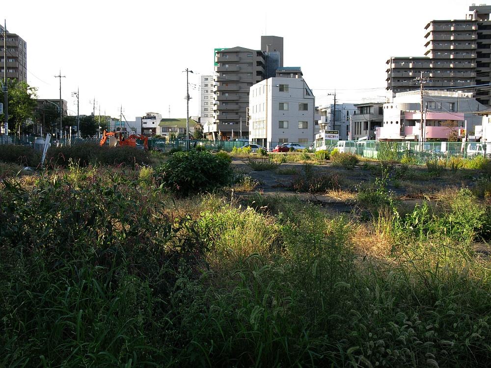 2010_11_01 0 (9)
