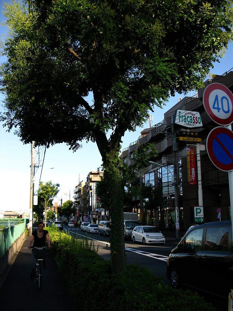 2011_07_11 027