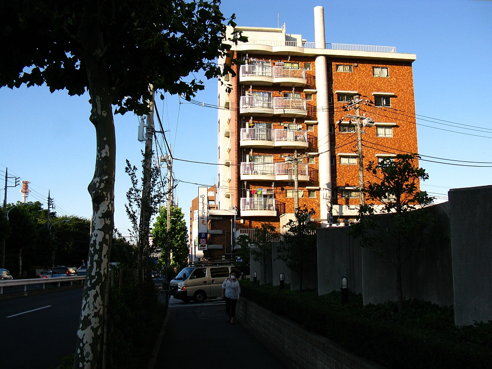 2011_07_11 036