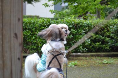 金沢旅行7