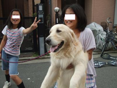 DSCF3403_convert_20120731074250.jpg