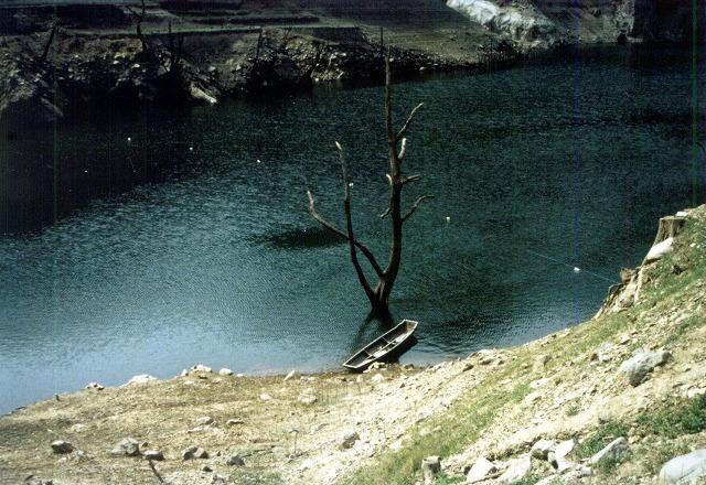 下筌ダム。下流の枯れ木と木船