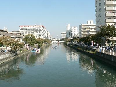 城北川です。中すみれ橋から北をみます