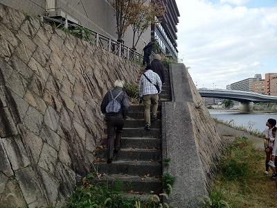 堤防が3mほどの高さに連続しています