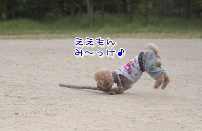 11_20120605112546.jpg