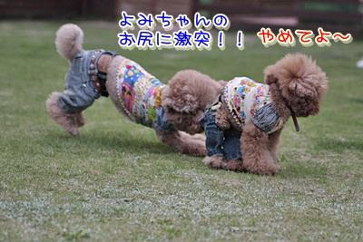 12_20120514102927.jpg