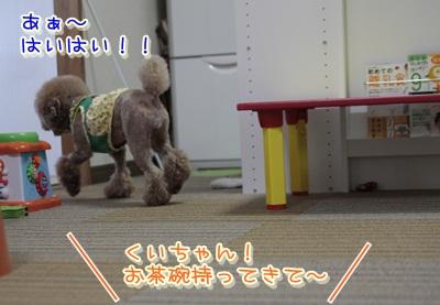 1_20120530110918.jpg