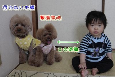 2_20120529103226.jpg