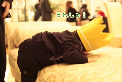 2_20121209091529.jpg