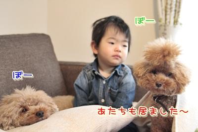 2_20121219230159.jpg