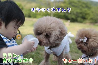 3_20120523105210.jpg