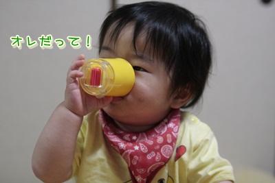 3_20120530110917.jpg