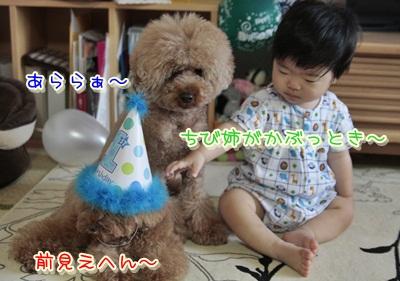 4_20120722112042.jpg