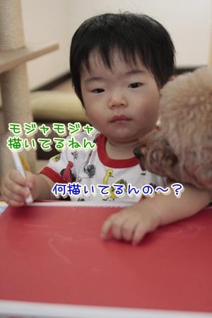 4_20121005171427.jpg