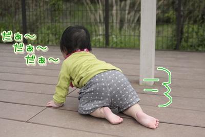 5_20120502103907.jpg