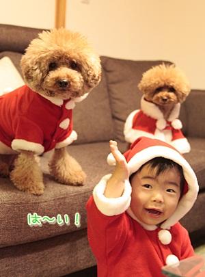 5_20121224224650.jpg
