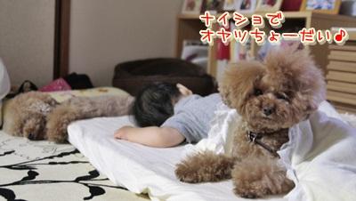 6_20120702235307.jpg