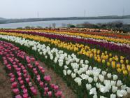 2012_0419_094727-DSCF5683.jpg