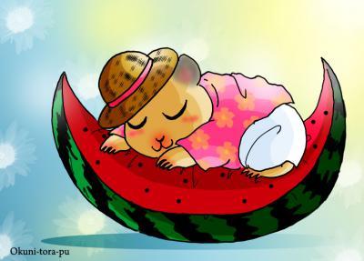 ハムスターさん・夏の昼寝