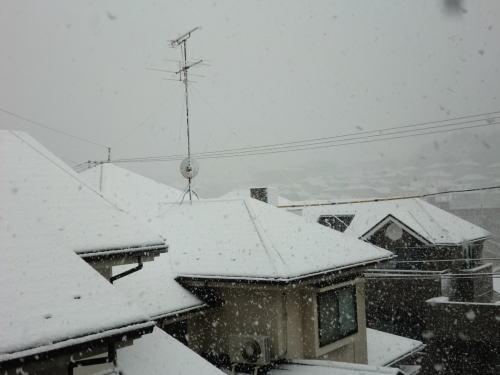snow20130114_1