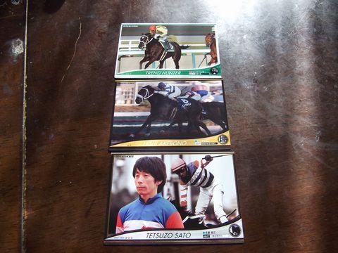 horse0527-2.jpg