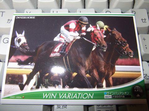 horse0527-3.jpg