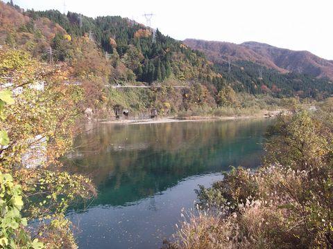 kouyou1125-1.jpg