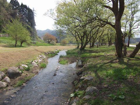 mizukusa0429-2.jpg