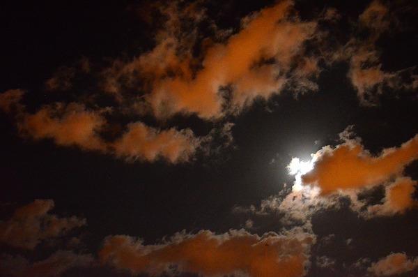 s-DSC_0440_20121007192352.jpg