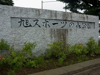 11073.jpg