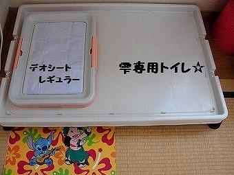 11664.jpg