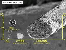 PM2.5微粒子