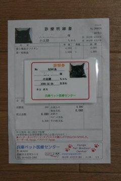 201204_shinsatsuken.jpg