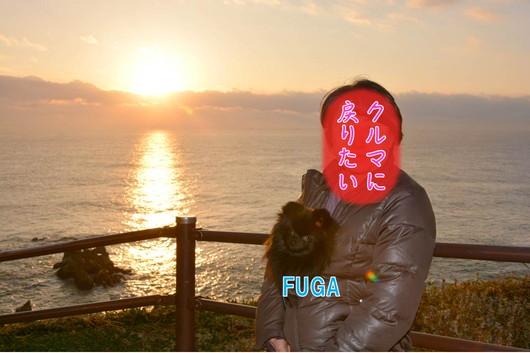 530px20140113_FUGA-0003.jpg
