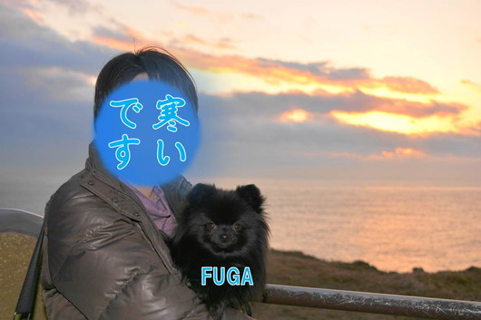 530px20140113_FUGA-0005.jpg